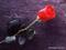 شاخه گل لاله قرمز