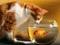 عکس گربه و تنگ ماهی
