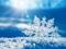 عکس دانه گریستالی برف