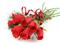 دسته گل رز سرخ