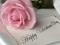 گل رز صورتی روز ولنتاین