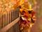 برگ های پاییزی و حصار چوبی