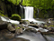 آبشار زیبا در جنگل