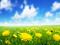 طبیعت بهار 93