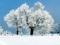 منظره بسیار زیبای زمستانی