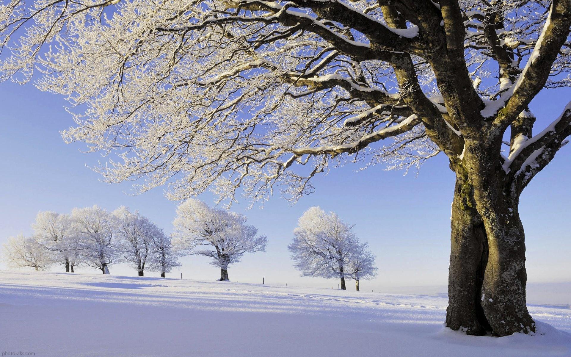 عکس های زیبا فصل زمستان