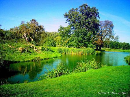 طبیعت برکه سبز nature and lake