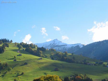 مراتع سرسبز در کوهستان Mountain