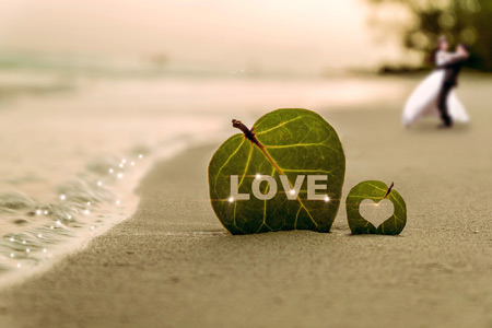 عکس رمانتیک زیبا در کنار ساحل beach heart leaf love