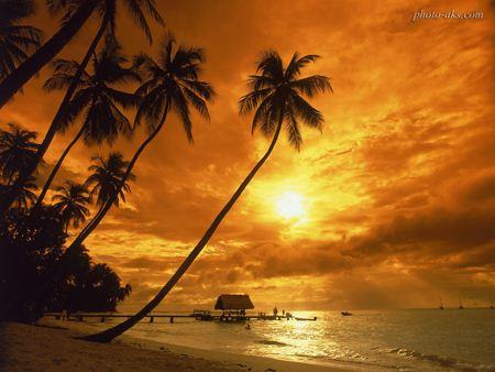 منظره غروب فانتزی خورشید sunset wallpaper