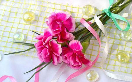 شاخه گل های صورتی زیبا pink flowers branch