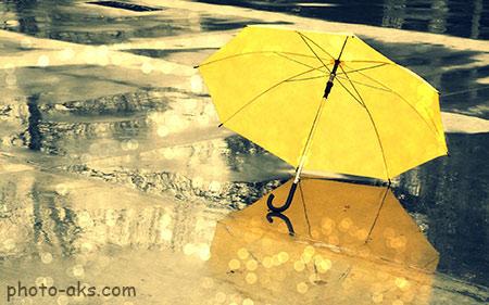 عکس چتر زرد دخترانه زیر باران umbrella in rain