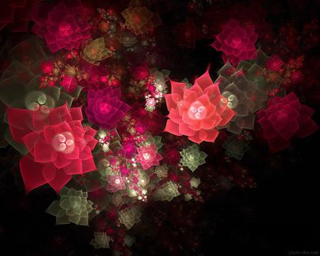 عکس فرکتالی و انتزاعی از گلهای زیبا abstraction fractal flowers