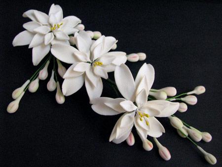 عکس گل مریم سفید بسیار زیبا aks gole maryam gole chini
