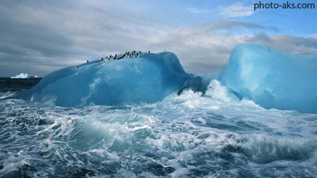 کوه یخ در اقیانوس منجمد شمالی ice ocean