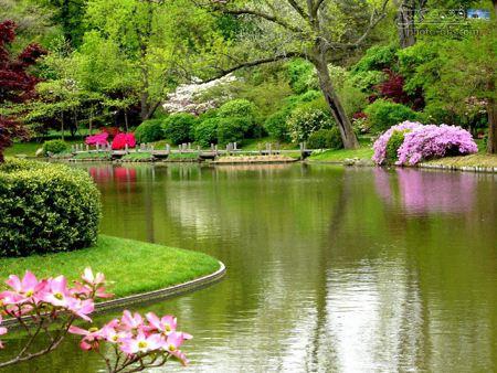 منظره رویایی سرسبز بهار 92 manzareh royayi bahar