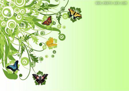 والپیپر کارتونی پروانه ها butterfly wallpaper