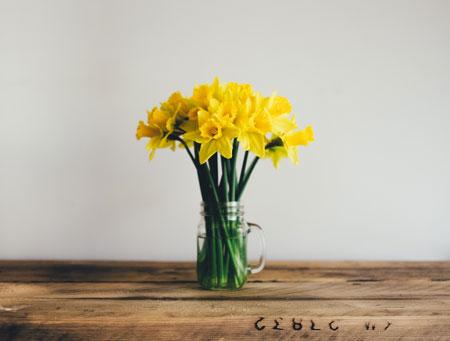 عکس گلدان گل نرگس زرد aks goldan gol narges zard
