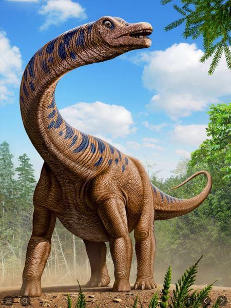 دایناسور دیپلودوکوس dinosaur diplodocus