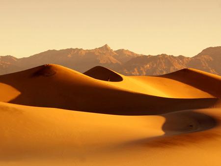 منظره بیابانی طلایی رنگ golden desert wallpaper