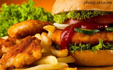 غذای فست فودی همبرگر fast food hamburger