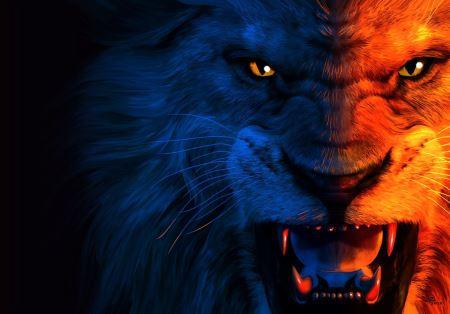 چهره شیر نر خشمگین angry lion wallpaper