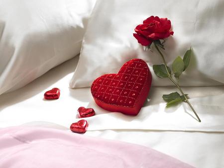 شاخه گل رز روی تخت خواب love heart rose flower