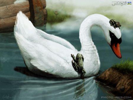 نقاشی بسیار زیبای قو naghashi go