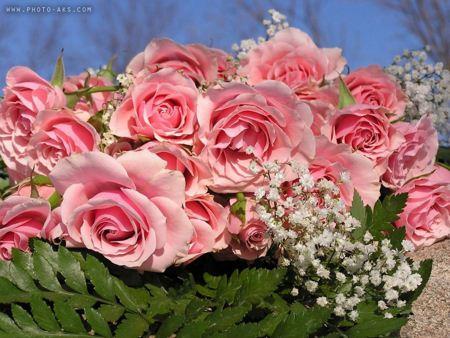 دسته گل رز صورتی pink rose