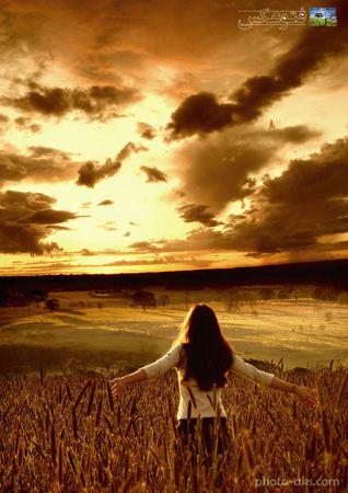 عکس رومانتیک دختر در گندم زار girl in Cropland on sunset