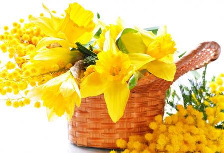 سبد گلهای نرگس زرد sabad gol narges