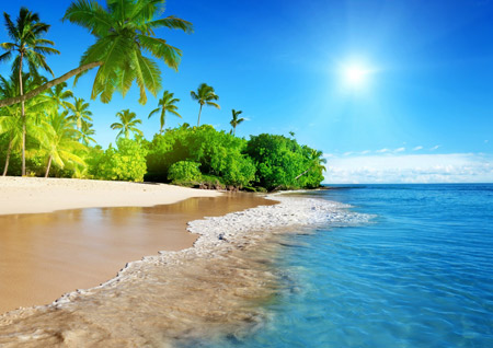 منظره ساحل زیبای جزیره sahel jazireh