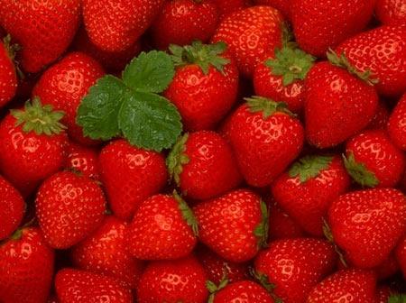 والپیپر زیبا از توت فرنگی قرمز strawberry red wallpaper