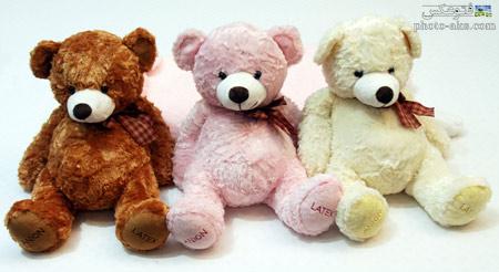 عروسک های خرس تدی teddy bear dolls