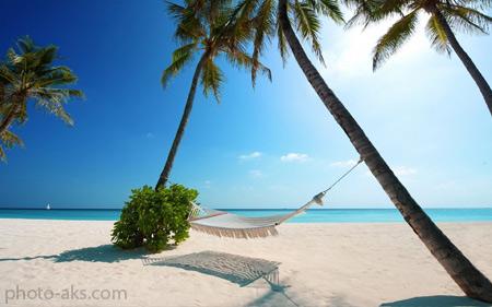 تصاویر زیبا از ساحل landscape in maldives