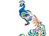 نقاشی مینیاتوری پرنده طاووس