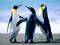 پنگوئن های امپراتور