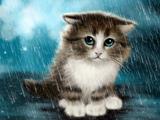 نقاشی گربه ناز زیر باران