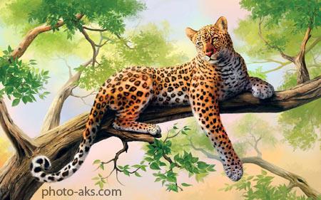 نقاشی زیبا از پلنگ وحشی leopard painting