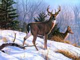 نقاشی گوزن وحشی در زمستان