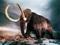 عکس ماموت - فیل های اولیه