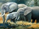 نقاشی خانواده فیل ها