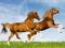 زیباترین والپیپر اسب ها