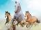 پوستر اسب های زیبا در حال دویدن