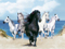 پوستر اسب ها در کنار ساحل