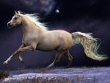 پوستر اسب در حال دویدن در شب