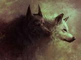عکس گرگ سیاه و سفید در تاریکی