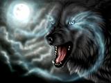 گرگ در زیر نور ماه