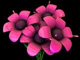 عکس گلهای صورتی سه بعدی