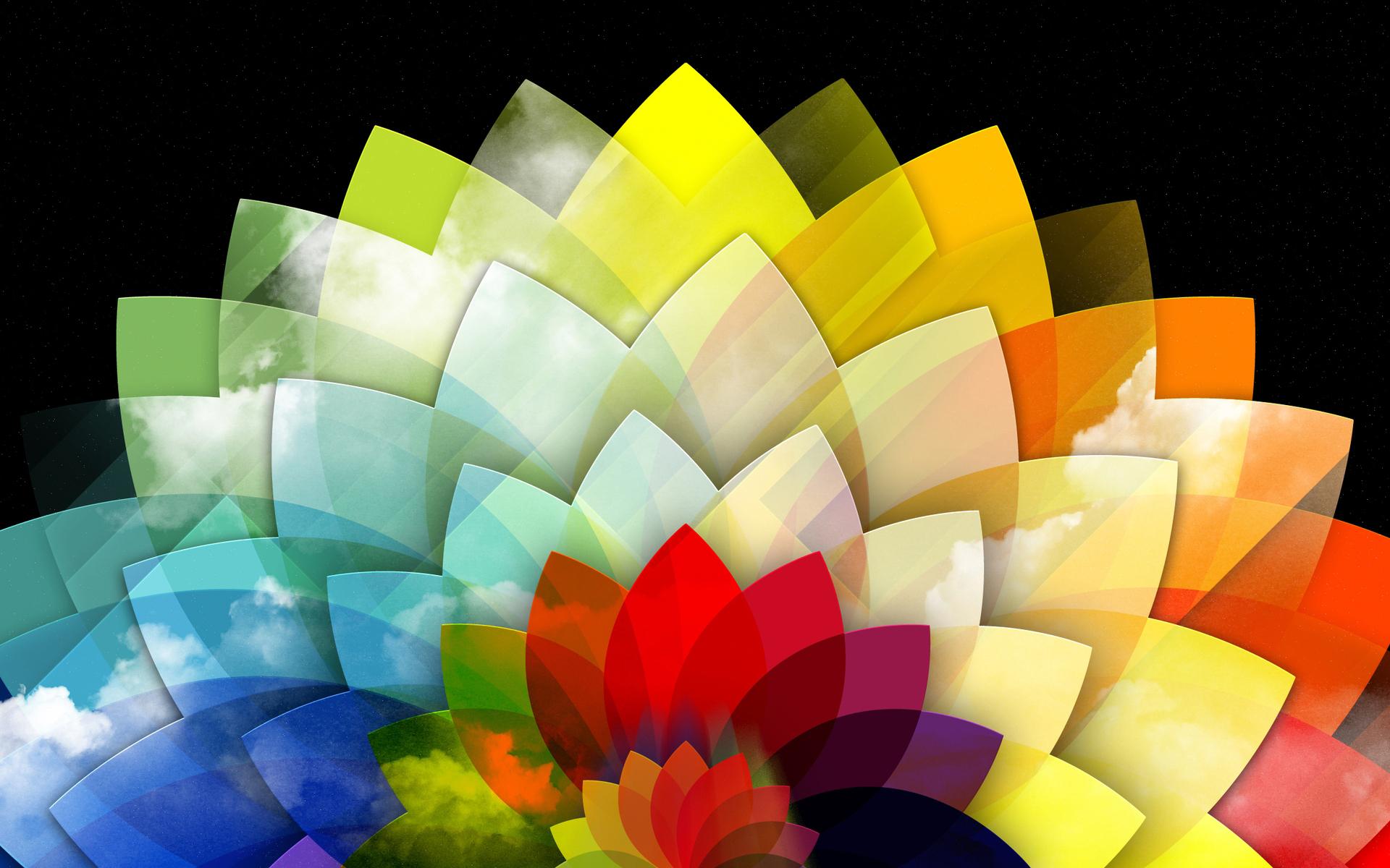 عکس انتزاعی گلبرگ گل رنگی colorful flower abstract
